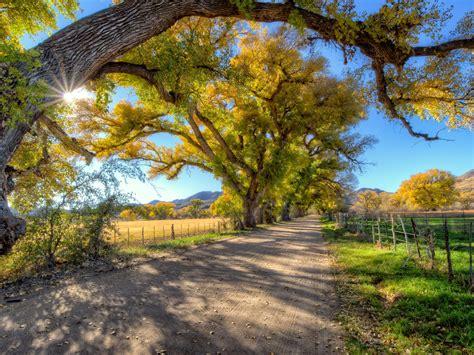 autumn landscape country road trees wallpaper hd wallpaperscom
