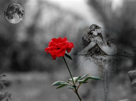 imagenes de rosas marchitas download dark gothic wallpaper 1280x960 wallpoper 222974