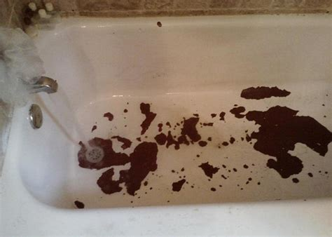 clogged bathtub bathroom bathtub clogged bathtub sink clog bathtub