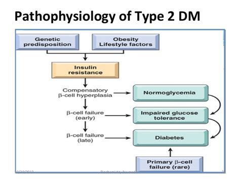Pathophysiology Of Type 2 Diabetes Essay by Diabetes Mellitus Type 1 And 2 Pdfeports170 Web Fc2