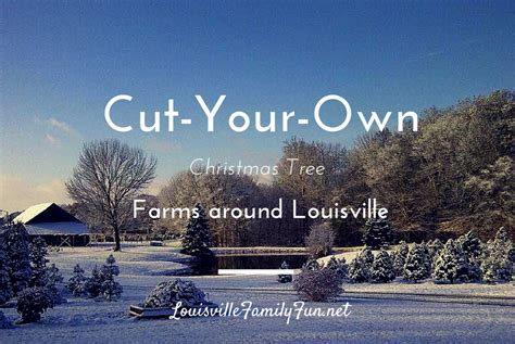 cut your own christmas tree lexington ky tree farms where in louisville kentuckiana and southern indiana can you cut