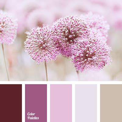 shades  violet color palette ideas