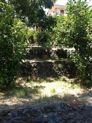 progettare il giardino da soli consigli di giardino in sicilia with progettare il