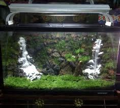 membuat aquascape air terjun  mudah ikanesiaid