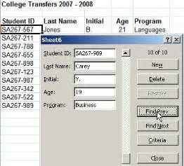 Excel Data Entry Form Template 2010 by Excel Data Entry Form Tutorial