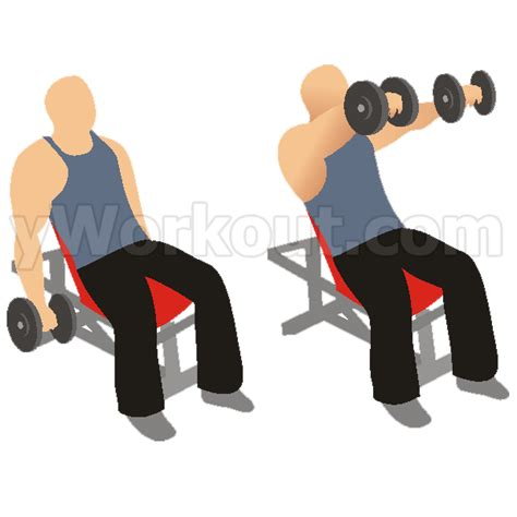 incline bench front raise sunshine and squats april 30 2014 shoulders and back