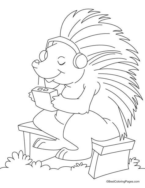 Porcupine Coloring Pages Porcupine Coloring Page