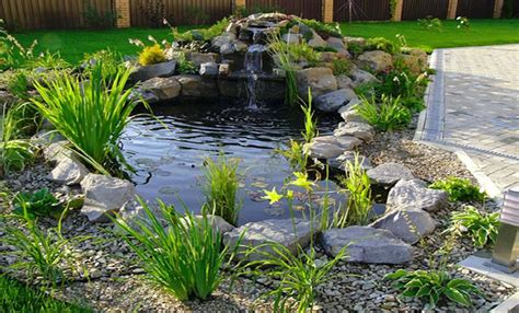 Backyard pond designs small pool design ideas