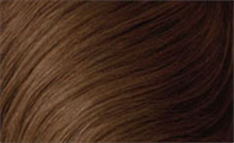 light brown hair color chart best hair color charts hairstyles weekly