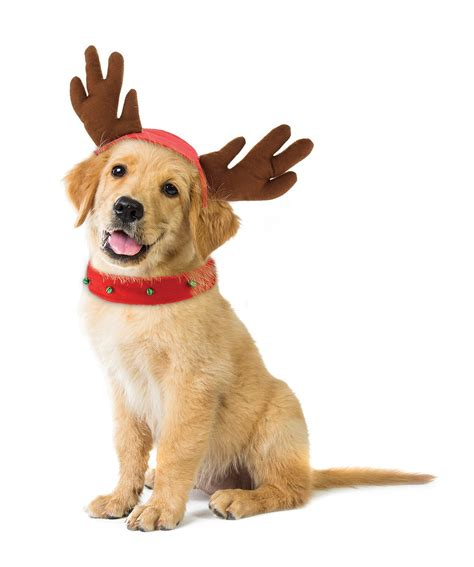 holiday dog reindeer costume kovot