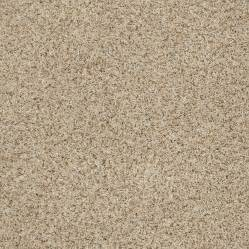 stainmaster carpet colors stainmaster carpet lookup beforebuying