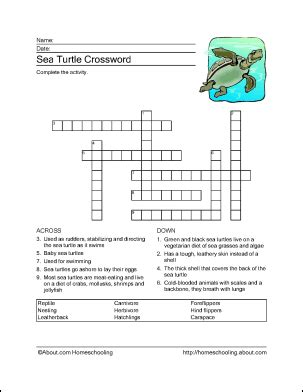 sea crossword sea turtle word search crossword puzzle and more