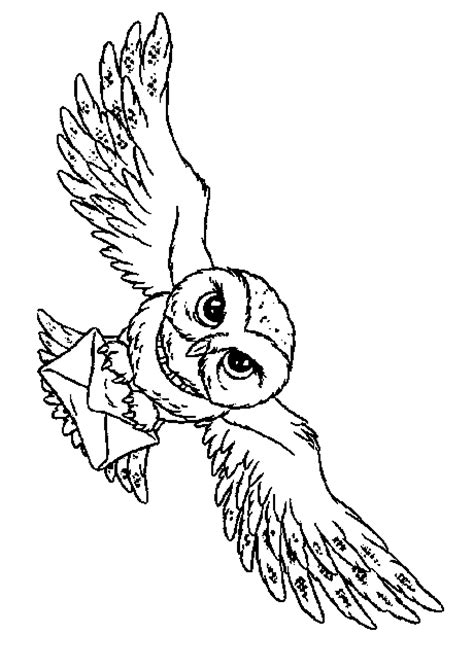 owl butterfly coloring page owls coloring pages to download and print for free
