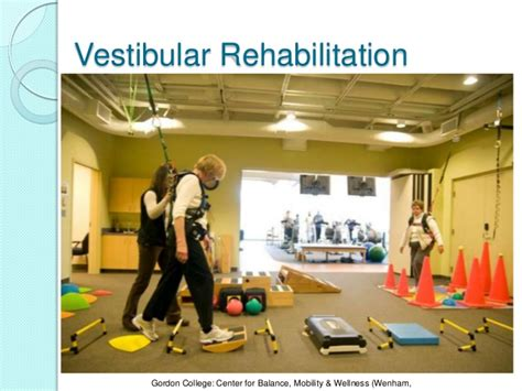 vestibular rehabilitation vestibular rehabilitation inservice