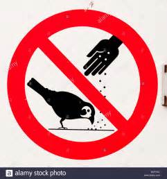 sign do not feed birds stock photo royalty free image