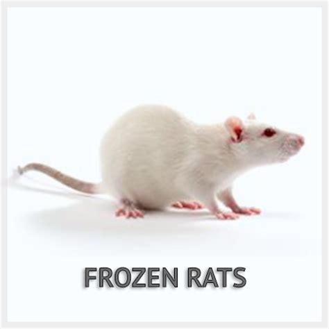 Frozen Feeder Mice Free Shipping frozen rats frozen rats for sale free shipping