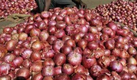 scientific findings about onions price crash govt scraps minimum export price on onions to