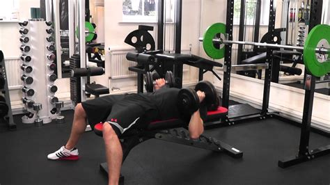 supinated bench press supinated dumbbell row images