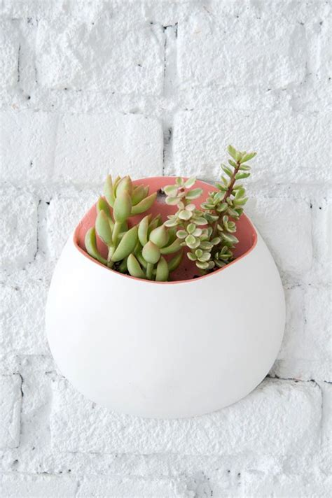 diy wall planters designlovefest i should have thought