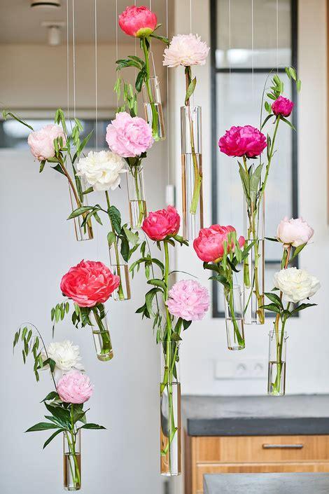 peony   june flower agenda flower council