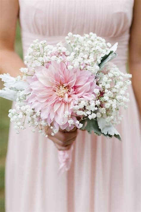 Bridesmaid Bouquet by Baby S Breath And Blush Dahlia Bridesmaid Bouquet By