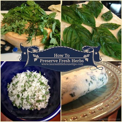 how to preserve fresh herbs