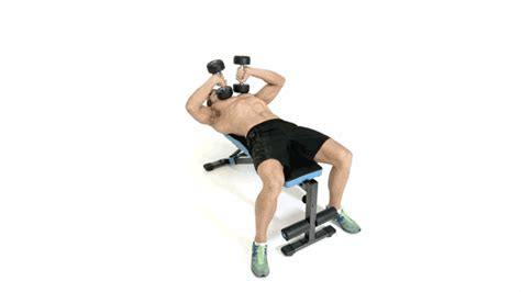 dumbbell exercises without bench 8 best exercises for bigger arms elakiri community