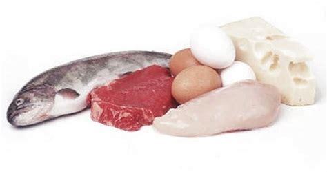 alimenti con proteine latte proteine albanesi it
