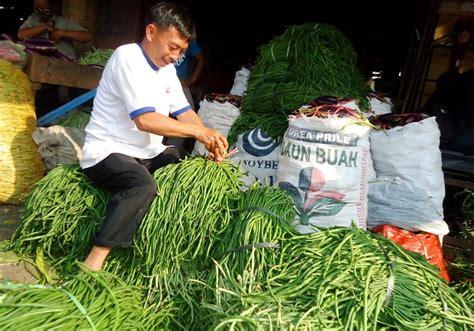 Harga Sayuran Segar by Gara Gara Ini Harga Sayuran Anjlok