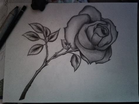 Black Bud Vases Pencil Drawings Of Flowers With Pictures Bouquet Idea