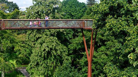 visitor pattern walk tree treetop walkway kew