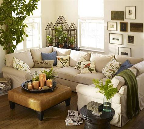living room with plants decorating our homes with plants interior design explained