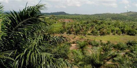Minyak Kelapa Sawit Cpo berita quot diserang quot dari lima penjuru kinerja ekspor sawit indonesia anjlok www kpbptpn co id