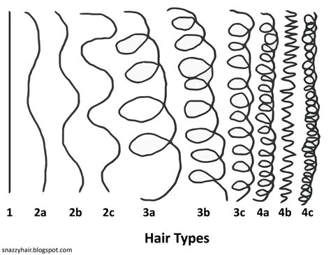 growth pattern classification sheila s naptural hair journey what is your hair type