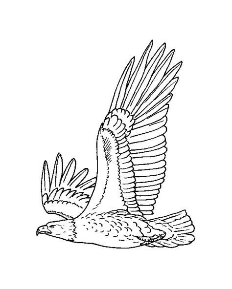 imagenes de aguilas faciles para dibujar dibujo de aguila real para colorear imagui