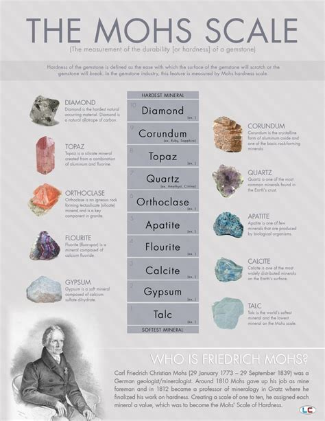 pin by danielle kesner on for my classroom science