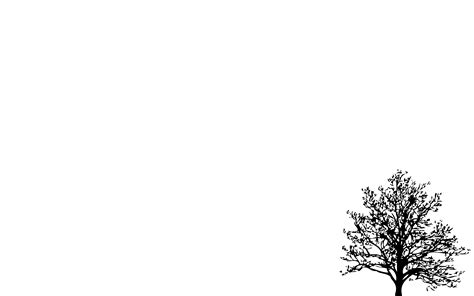 white minimalist wallpaper minimalistic simple background trees white walldevil