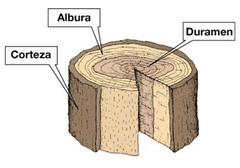 1.  ¿quedará bien el salpicadero de madera?