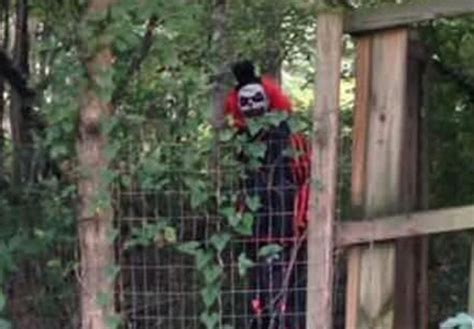 the clown forest murders books creepy clown sightings escalate locals scared to leave