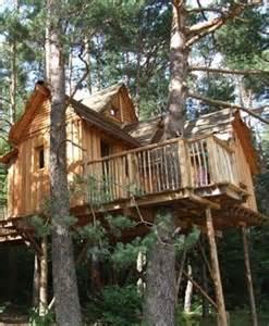 chambres d h 244 tes cabanes dans les arbres quot nids des vosges quot