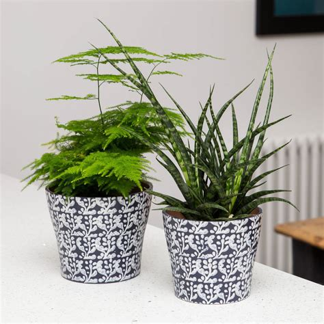 indoor plant pots inky blue printed indoor planter by stupid egg interiors notonthehighstreet