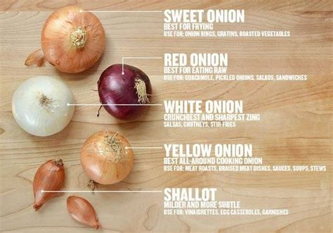 different types of onions recetas de supervivencia pinterest different types different