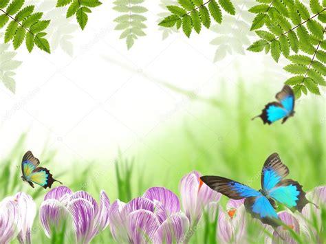 beautiful themes pictures beautiful nature theme stock photo 169 kesu01 6064487