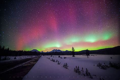 can you see the northern lights in maine borealis photo of the day