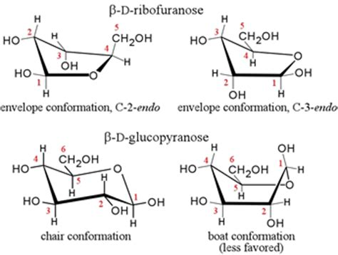 d conformation carbohydrates carbohydrate conformation carbohydrate linkage