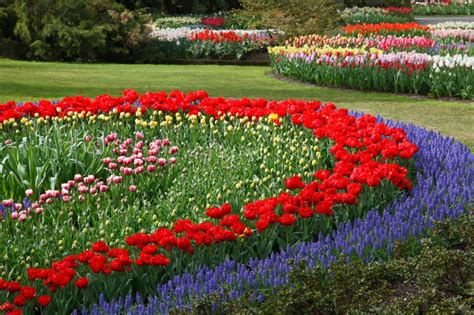 Fantastic Flower Bed Ideas Ideas For Flower Gardens