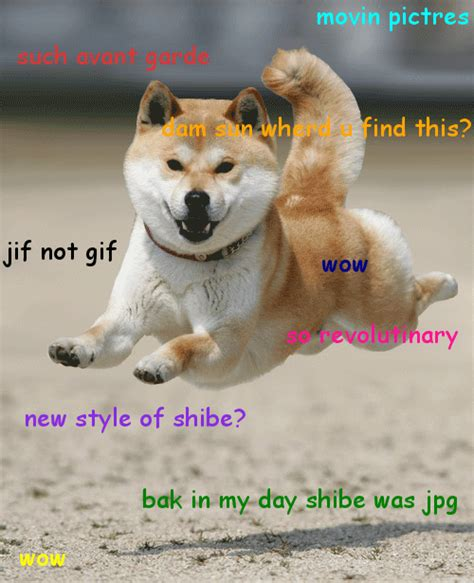 Doge Wow ot wow such doge genius