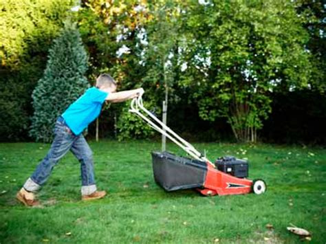 mowing the lawn for the living stingy mowing the s lawn