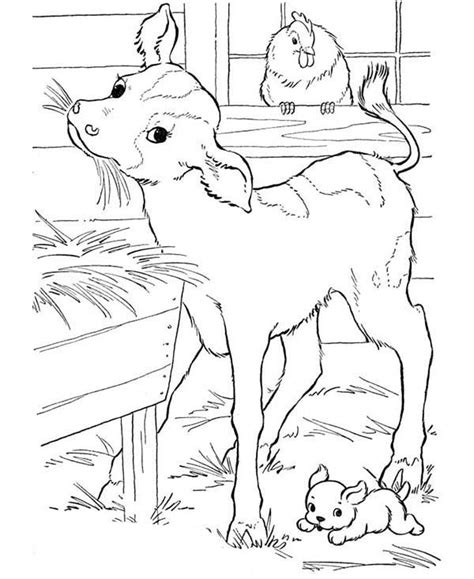 farm goat coloring page farm animal coloring pages farm animal goat eating