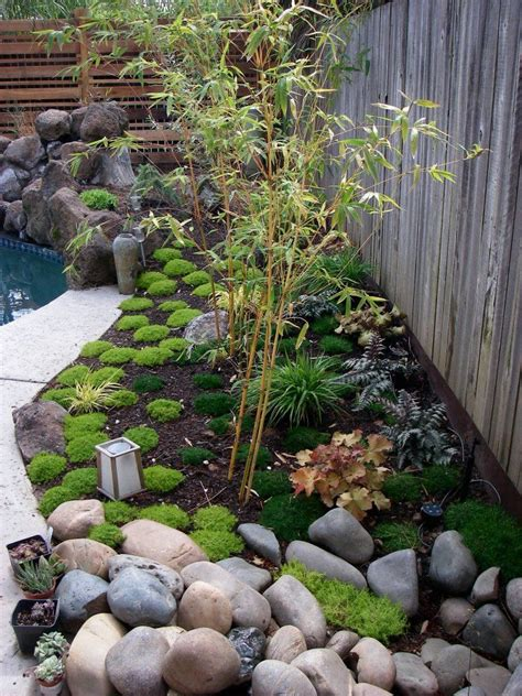 Japanese Rock Garden Plants Best 25 Japanese Rock Garden Ideas On Pinterest Japanese Gardens Japanese Garden Style And